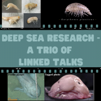 Deep Sea Research – A Trio of Linked Talks